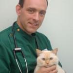 Vet Duncan Reavell Picture: http://www.lynwoodvets.co.uk/branches/wimborne/veterinary-surgeons.shtml