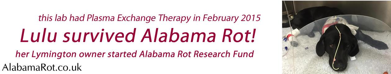 Alabama Rot / CRGV help and research news