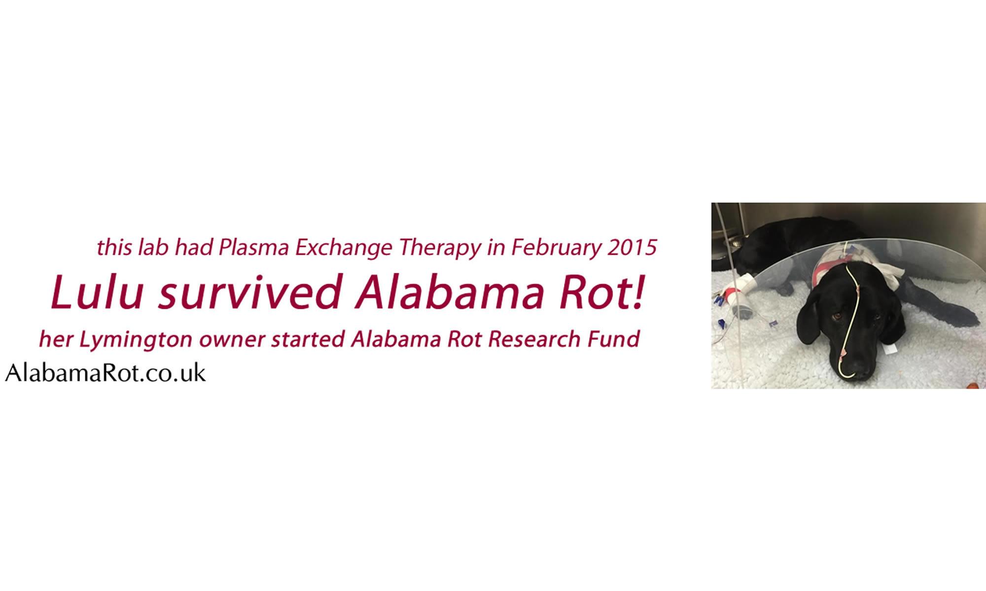 AlabamaRot.co.uk